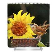 Carolina Wren And Sunflowers Shower Curtain