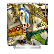 Carousel Charger Shower Curtain