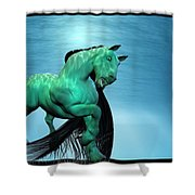 Carousel Vi Shower Curtain