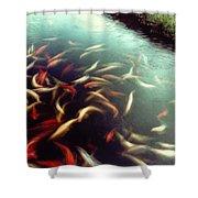 Carp Pond Colors Shower Curtain