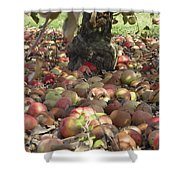 Carpet Of Apples Shower Curtain
