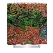 Carpet Of Fall Colors In Portland Japanese Garden Shower Curtain