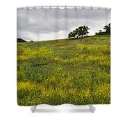 Carpet Of Malibu Creek Wildflowers Shower Curtain