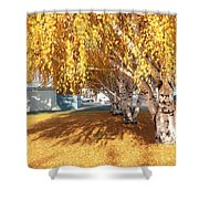 Carpet Of Yellow Leaves Shower Curtain