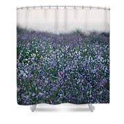 Carpinteria California Wildflowers Shower Curtain