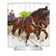 Carriage Artistic Shower Curtain