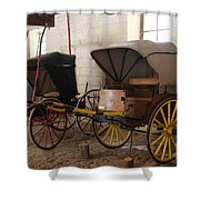 Carriage - Chateau Usse Shower Curtain