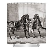 Carriage Horses For The King Shower Curtain