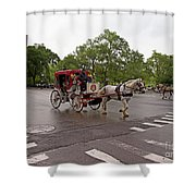 Carriage Ride In Central Park Shower Curtain