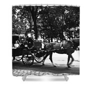 Carriage Ride Nyc Shower Curtain
