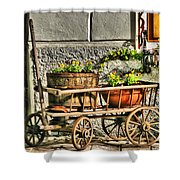 Cart And Flowers In Slovenia Shower Curtain