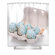 Carton Of Easter Eggs Shower Curtain by Amanda Elwell