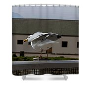 Cartoon - A Bird Perched On A Metal Post Getting Ready To Take Off Shower Curtain