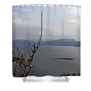 Cartoon - Plants In Front Of The Waters Of A Lake In The Scottish Highlands Shower Curtain