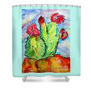 Cartoon Cactus Shower Curtain