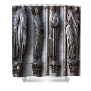 Carved Columns Shower Curtain