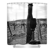 Carved Wine Bottle And Wine Glass Shower Curtain