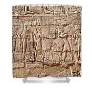 Carvings At The Temple Of Karnak Shower Curtain