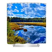 Cary Lake Near Old Forge New York Shower Curtain by David Patterson