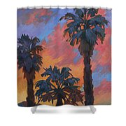 Casa Tecate Sunrise Shower Curtain