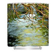 Cascade Cedar Shower Curtain