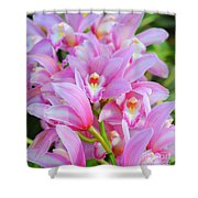 Cascade Of Pink Orchids Shower Curtain