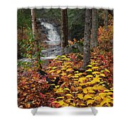 Cascade Creek  Autumn Shower Curtain