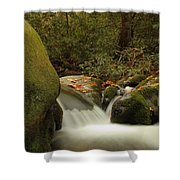 Cascades In Appalachian Mountains Shower Curtain