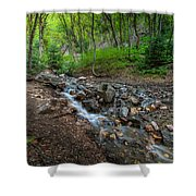 Cascades Of The Forest Shower Curtain