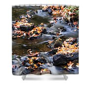 Cascading Autumn Leaves On The Miners River Shower Curtain