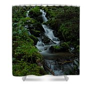 Cascading Brook In Mount Rainier National Park Shower Curtain
