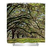 Cascading Oaks Shower Curtain