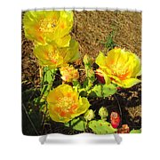 Cascading Prickly Pear Blossoms Shower Curtain