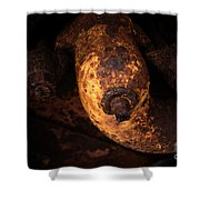 Case Tractor Abstract Shower Curtain