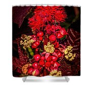 Caster Oil Plant Shower Curtain