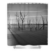 Casting Shadows Bw Shower Curtain