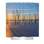 Casting Shadows Shower Curtain
