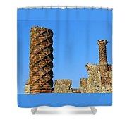 Castle Brickwork Shower Curtain