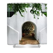 Castle Entrance Shower Curtain