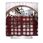 Castle Gate Shower Curtain
