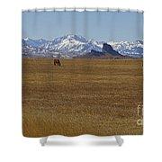 Castle Rock Horses   #8515 Shower Curtain