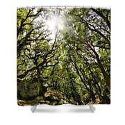 Castle Rock State Park Sun Rise Shower Curtain