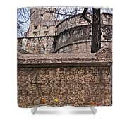 Castle With Poppies Shower Curtain