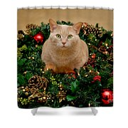 Cat And Christmas Wreath Shower Curtain