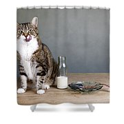 Cat And Herring Shower Curtain by Nailia Schwarz