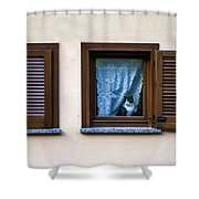Cat At The Window Shower Curtain