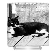 Cat Black And White Shower Curtain