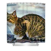 Cat By The Seaside Shower Curtain