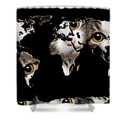 Cat Eyes World Map 2 Shower Curtain by Andee Design
