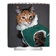 Cat In Patrick's Coat Shower Curtain